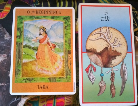 The Cards: Goddess Inspiration Oracle Guide by Kris Waldherr; The Animal Medicine Cards by Jamie Sams and Dave Carson.