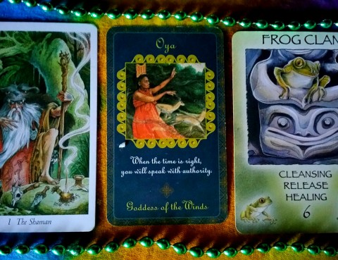 The Cards: Goddess Inspiration Oracle Guide by Kris Waldherr; Spirit of the Wheel by Linda Ewashina, illustrated by Jody Bergsma; The Wildwood Tarot by Mark Ryan, John Matthews and Will Worthington.