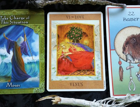 The Cards: Ascended Masters by Doreen Virtue, Ph.D.; The Goddess Tarot by Kris Waldherr;The Animal Medicine Cards by Jamie Sams and Dave Carson.