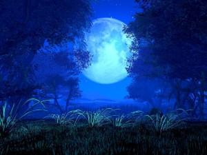 https://maraclearspring.com/event/blue-moon-shamanic-sound-journey/