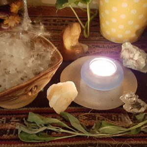Milkweed Seeds Aries New Moon Ceremony
